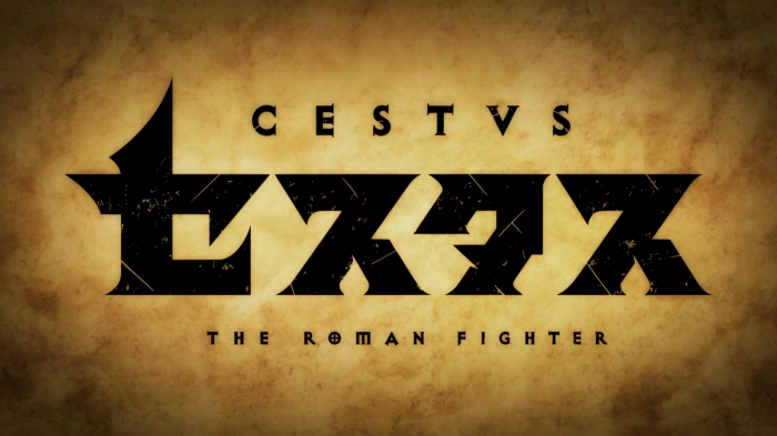 cestvsromanfightertitle